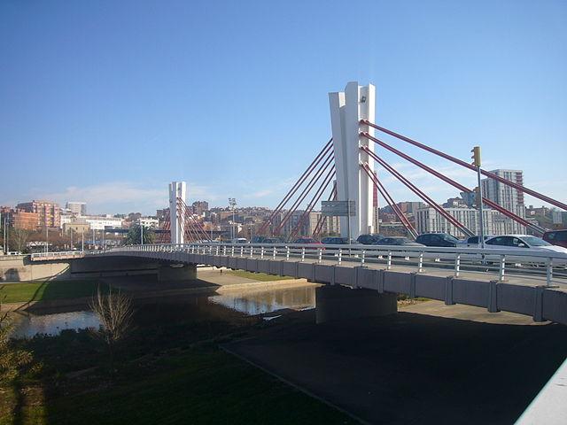Pont Can Peixauet sobre el Besòs, de Jordi Ferrer, a la Viquipèdia